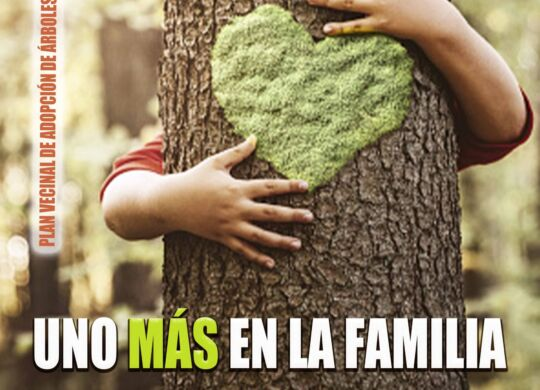 campaña 1+familia web