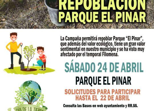 replantacion pinos web